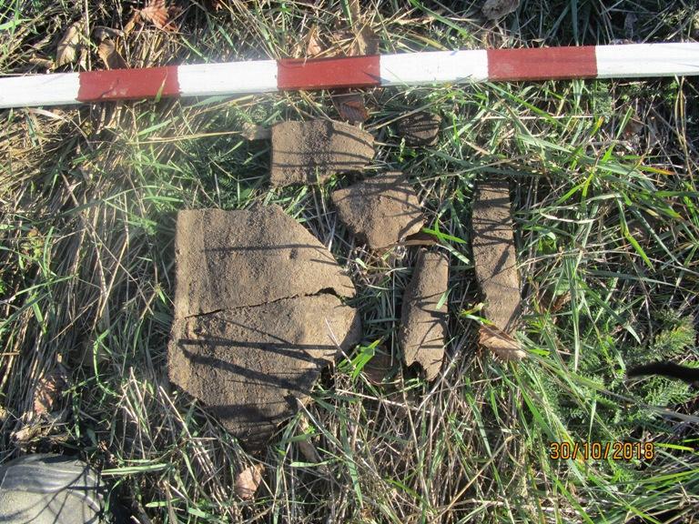 Древні кераміка та кістки