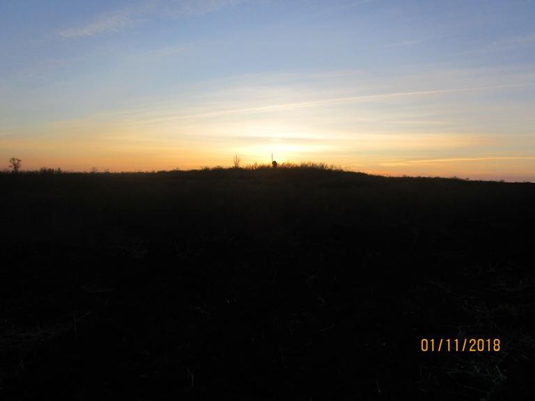 Курган та захід сонця