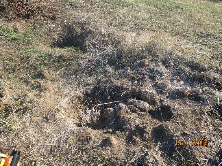 Розкопки кургану