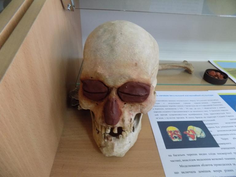 Модель обличчя по черепу