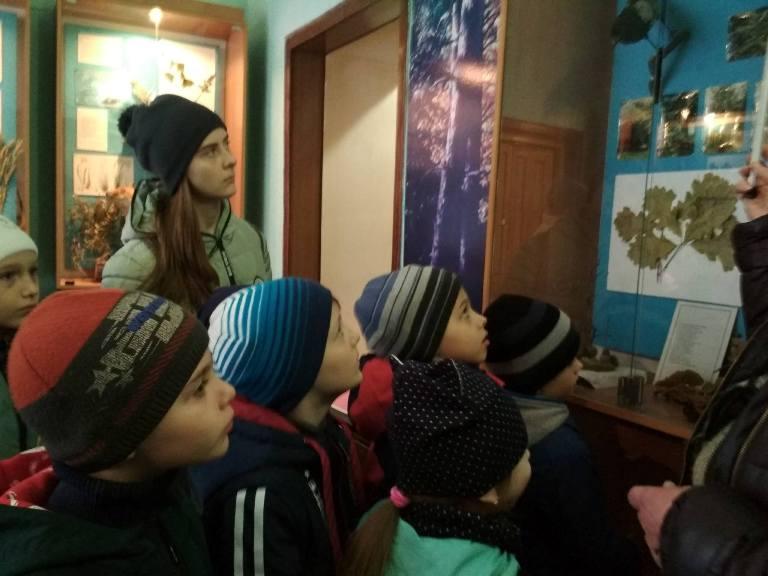 Великоанадольський ліс - музей