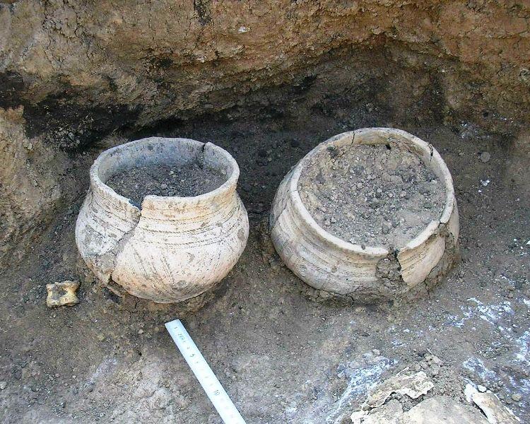 Катакомбна культура - поховання